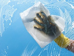 东莞杀虫公司灭白蚁 灭臭虫 杀跳蚤 灭蟑螂 灭鼠,除四害