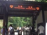 供应上海实木门,上海实木复合门,上海原木门