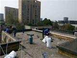 七里庄水管安装 家庭水管修理