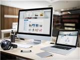 展示型 商城型 分销系统 多用户商城小程序开发