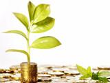 易贷投资 诚邀加盟
