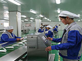 进出口淀粉 细度80目工业用膨化玉米淀粉 淀粉 预糊化淀粉